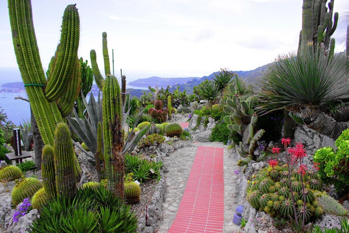 Exotic Garden of the Èze Village