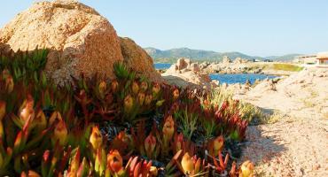 Tonnara Beach, Bonifacio, Corsica